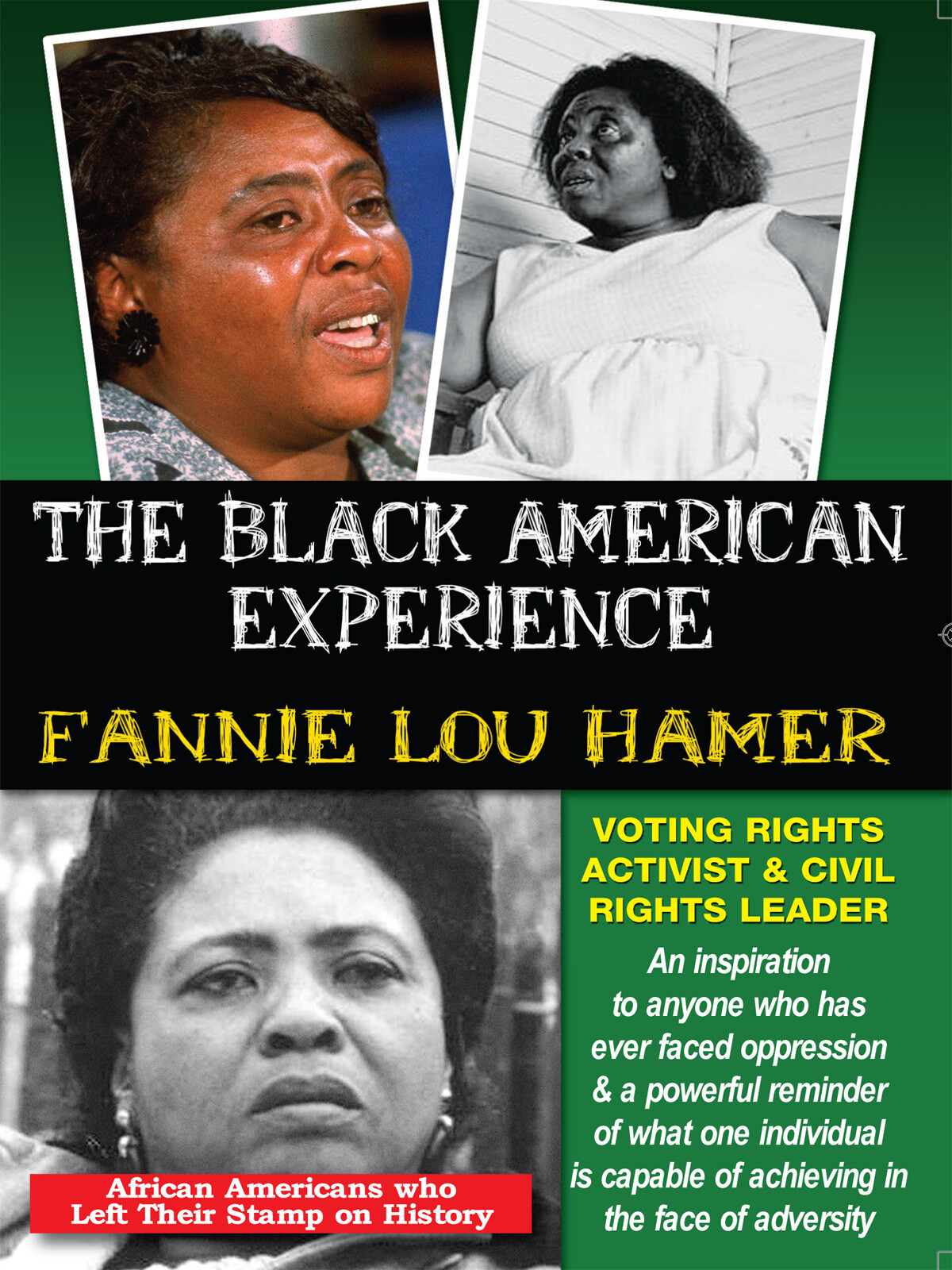 L5732 - Fannie Lou Hamer Voting Rights Activist