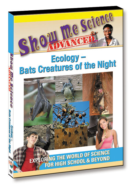 K4564 - Ecology Bats Creatures of the Night