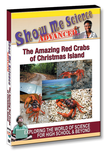 K4572 - The Amazing Red Crabs of Christmas Island