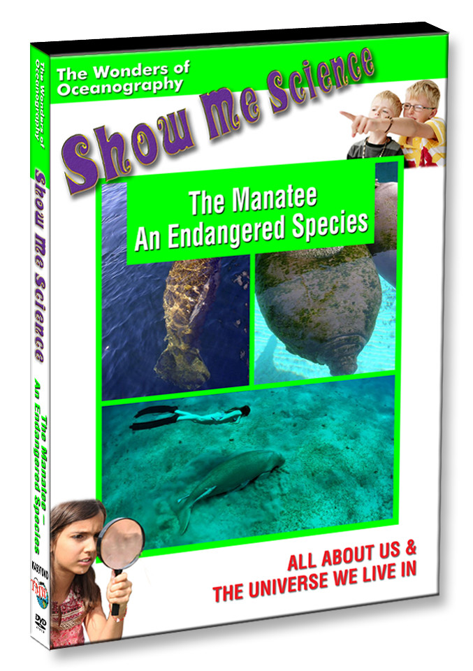 K4597 - The Manatee An Endangered Species