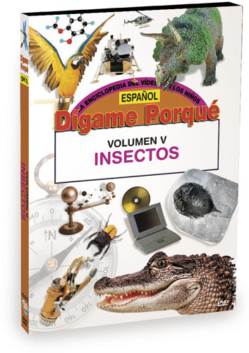 K6245 - Tell Me Why Insects Spanish